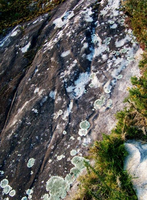 Petroglifos de Sete Camiños.