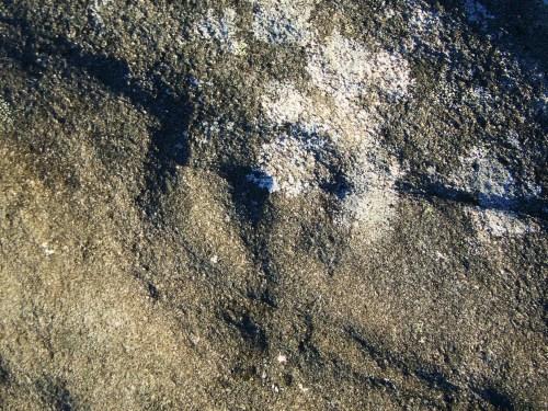 Figura circular nos petroglifos de Sete Camiños.