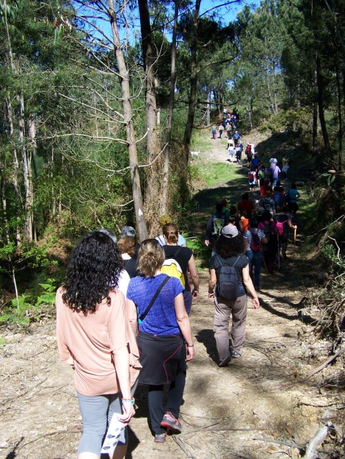 Roteiro pola protección do Monte Pituco (Pornedo).