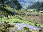 Roteiro pola protección do Monte Pituco(Pornedo).