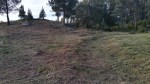 Desbroce arredor do conxunto rupestre doPornedo.