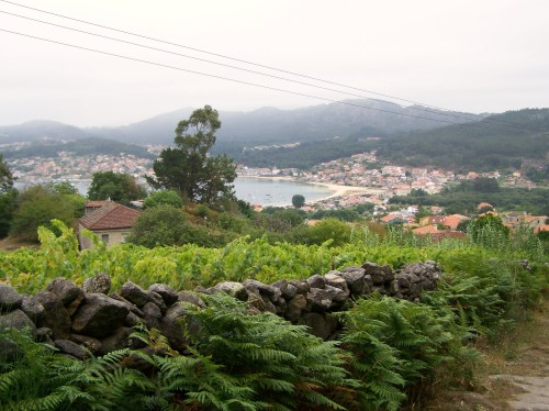 Vista dende A Fanica.