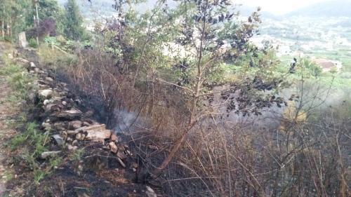 Finca afectada polo lume no Casal.