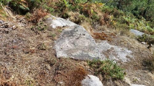 Petroglifos de Pinal de Caeiro
