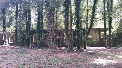 Ruínas do antigo lazareto