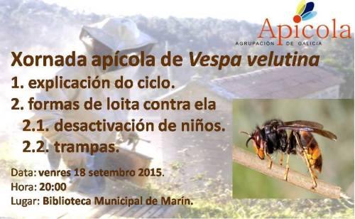 Xornada sobre Vespa Velutina en Marín