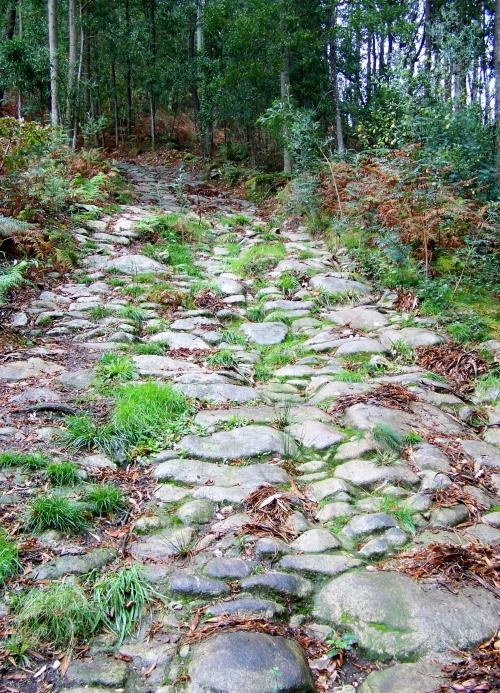 Camiño do Monte Gagán.