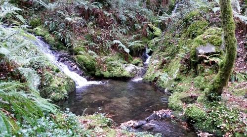 Ruta polo río da Fraga coa Plataforma dos Montes do Morrazo.