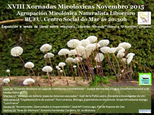 Xornadas Micolóxicas da Agrupación Liboreiro, en Bueu