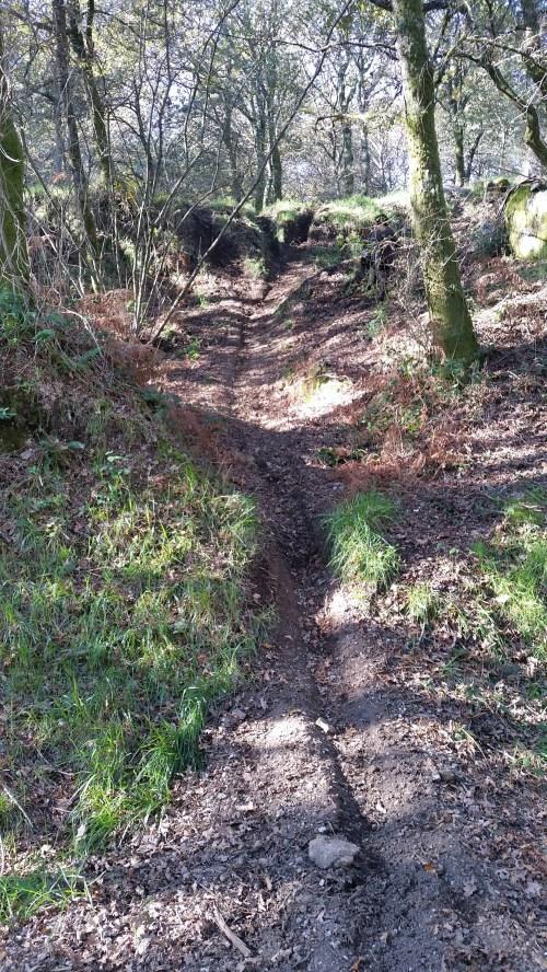 Ruta ata o Monte da Paralaia