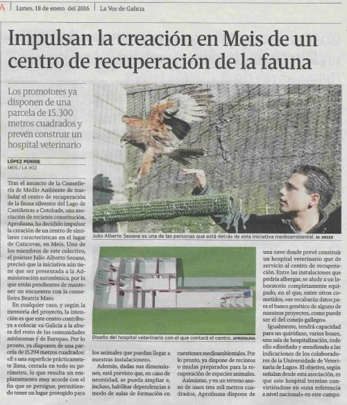 La Voz, 18 xaneiro 2016
