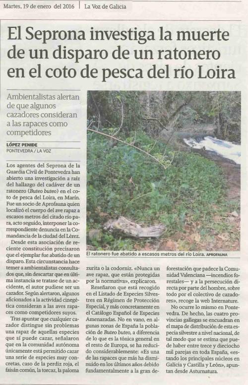 La Voz, 19 xaneiro 2016