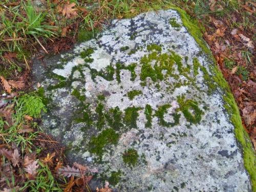 Pedra con brións a carón das estruturas descubertas do castro.