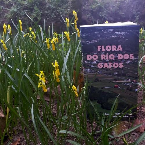 Día dos Humedais nas Brañas do Gafos con Vaipolorío.