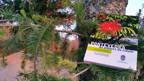 """""""Pontevedra: as árbores da cidade"""""""
