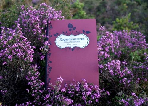 Día do libro no Monte Pituco (Pornedo).