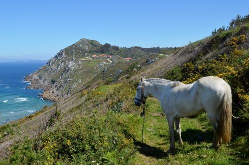 Cabo Home, Costa da Vela