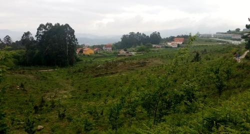 IV Saída polo Monte de Salcedo