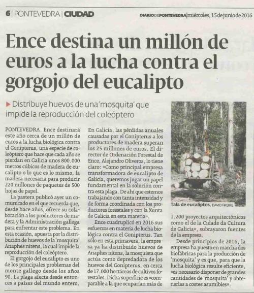 Diario, 15 xuño 2016