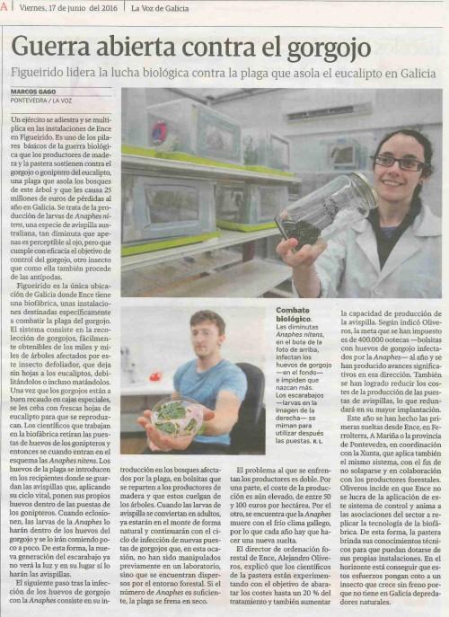 La Voz, 15 xuño 2016