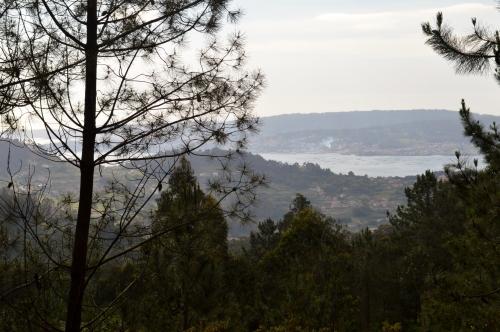 Ruta polos montes de San Xulián