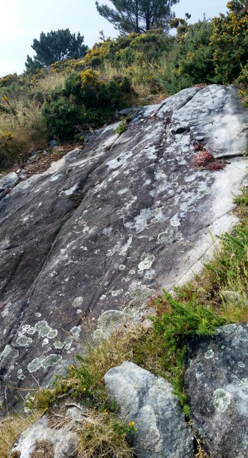 Acondicionamento das sendas para o roteiro do 9 de xullo polos montes de San Xulián.