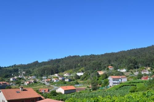 Vista do Monte Pituco dende A Grela