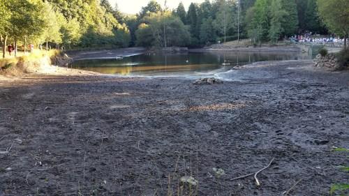 Escased de auga no lago