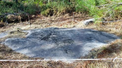 Pedra da Pereira (Pedrouzos)