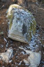 Desplumadeiro feito por un gavián ou un azor, cunha pomba como posible presa.