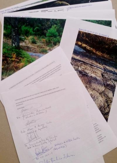 Dossier entregado na Comisión de Cultura e sinaturas de apoio de profesionais e expertos
