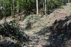 Ruta polos montes de Vilaboa
