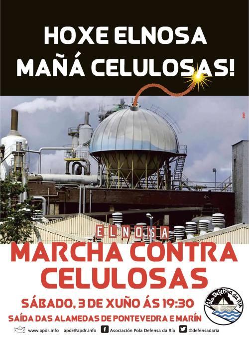 Marcha contra Celulosas-Elnosa