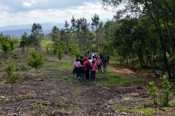 No sendeiro a carón do rego que conduce aos muíños do Batán