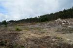 Zona onde se vai instalar a futura aldeaetno-neolítica
