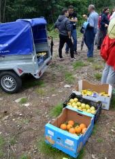 Avituallamento con froita e auga