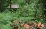 Andaina polos montes de Vilaboa coa Plataforma Montes doMorrazo