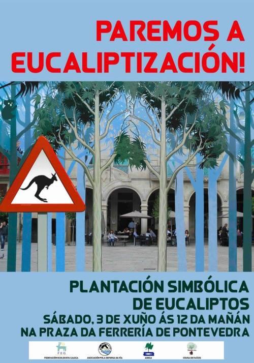 Plantación simbólica de eucaliptos na Ferrería