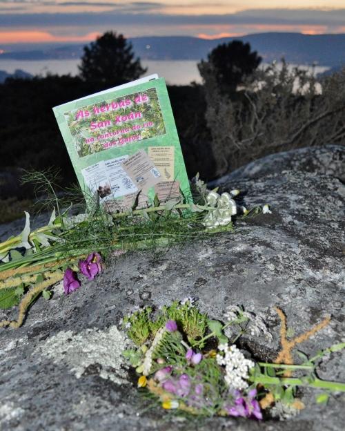 Libro das Herbas de San Xoán de Vaipolorío, no Monte Pituco.