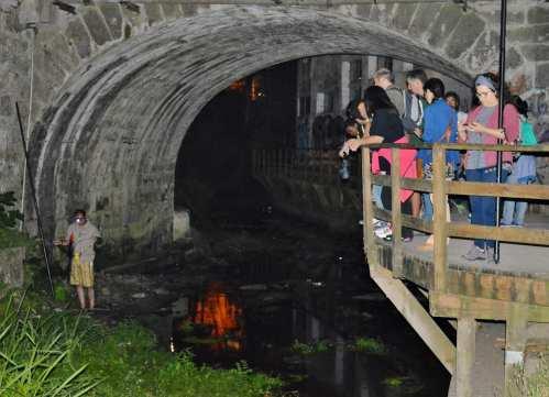 Noite Europea dos Morcegos, con Vaipolorío e Drosera no río Gafos