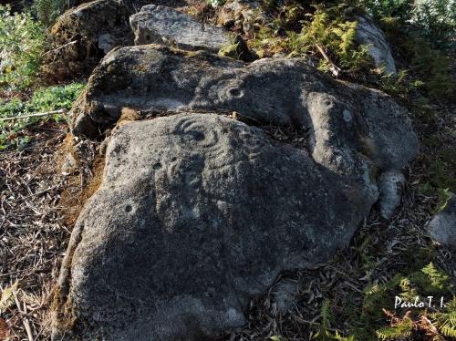 Conxunto rupestre A Carrasca, nº2, San Xulián. Foto, Paulo Troitiño