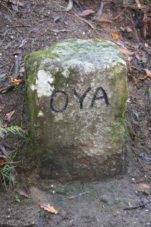 Marca de xurisdicción do mosteiro de Oia