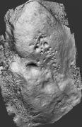 Reconstitución dixital 3D do grupo n°4 do conxunto rupestre da Carrasca