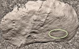 Reconstitución dixital 3D do grupo n°6 do conxunto rupestre da Carrasca