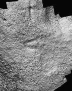 Detalle da punta de alabarda apreciada no grupo n°4 do conxunto rupestre da Carrasca mediante as imaxes procesadas coa técnica da reconstitución dixital
