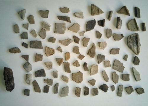 Restos de cerámica descubertos en Pelagartos