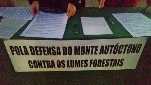 Sinaturas de apoio á ILP polo bosque autóctono