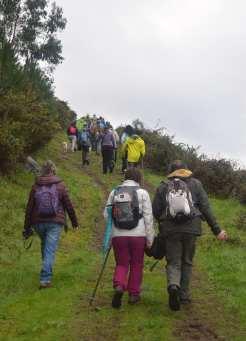 Ruta por Sobareiro e A Cova coa Plataforma Montes do Morrazo
