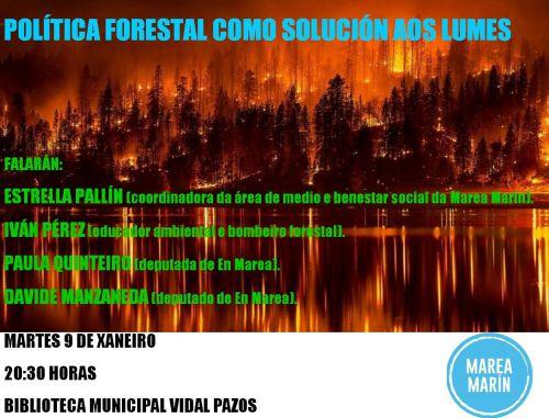 Política forestal como solución aos lumes