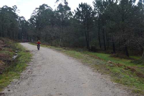 Actividade deportiva na pista forestal do Pituco